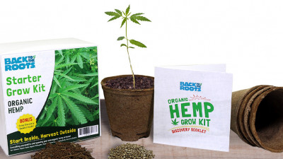 Back to the Roots Reintroduces Misunderstood Hemp to Home Growers