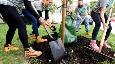 Enhance Detroit's Green Space, and Your Wellbeing, at the Same Time