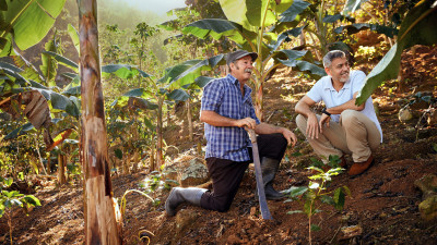 Nespresso's 'Reviving Origins' Program Revitalizing Coffee Regions Under Threat