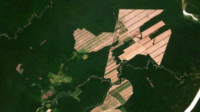 See Change: Real-Time Visibility Into Land Changes Key to Ending Deforestation