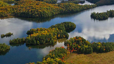 TD, NCC Assign Economic Value to Ecological Services of Canada's Forests