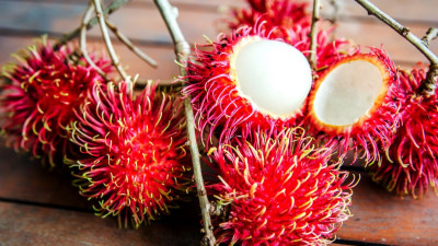 BASF - The Rambutan-fruit Tree: A Sustainability Story
